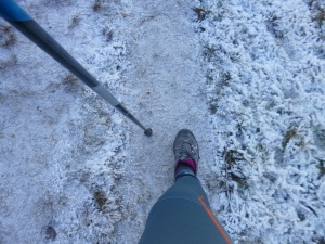 Nordic walking Austria