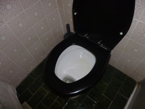 Shelf toilet