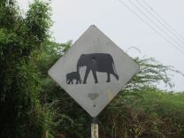 sri_lanka_elephantsign