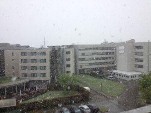 Snow april austria