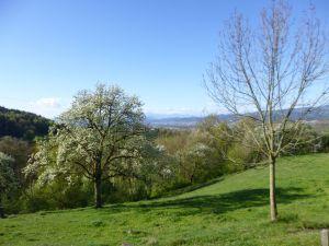 Spring april austria