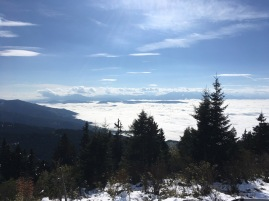 snow walk austria
