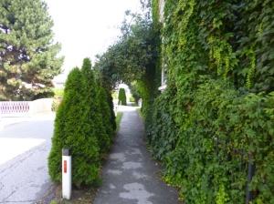 Wolfsberg - arch