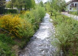 Wolfsberg - small streams