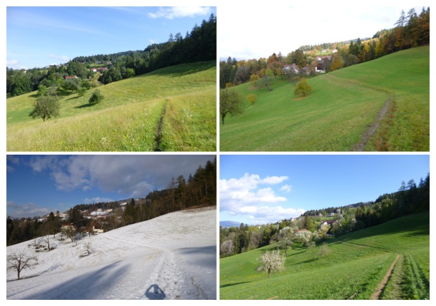 Four seasons summer winter autumn spring