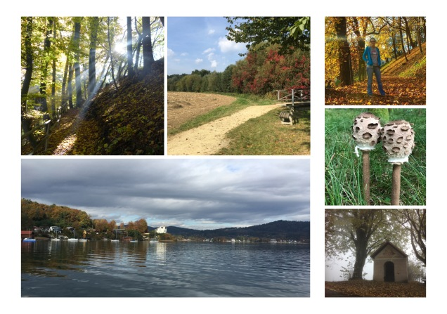 autumn austria