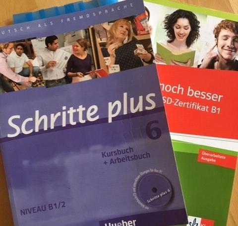 B1 german test books