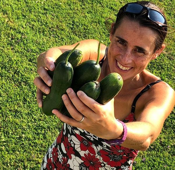 fresh grown veges - cucumber