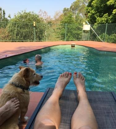 Australia - backyard pool