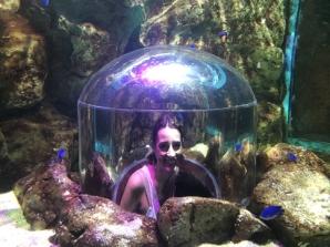 Bangkok OC (Oriental City) - aquarium