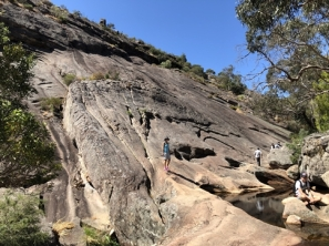 Grampians Elephants Hide
